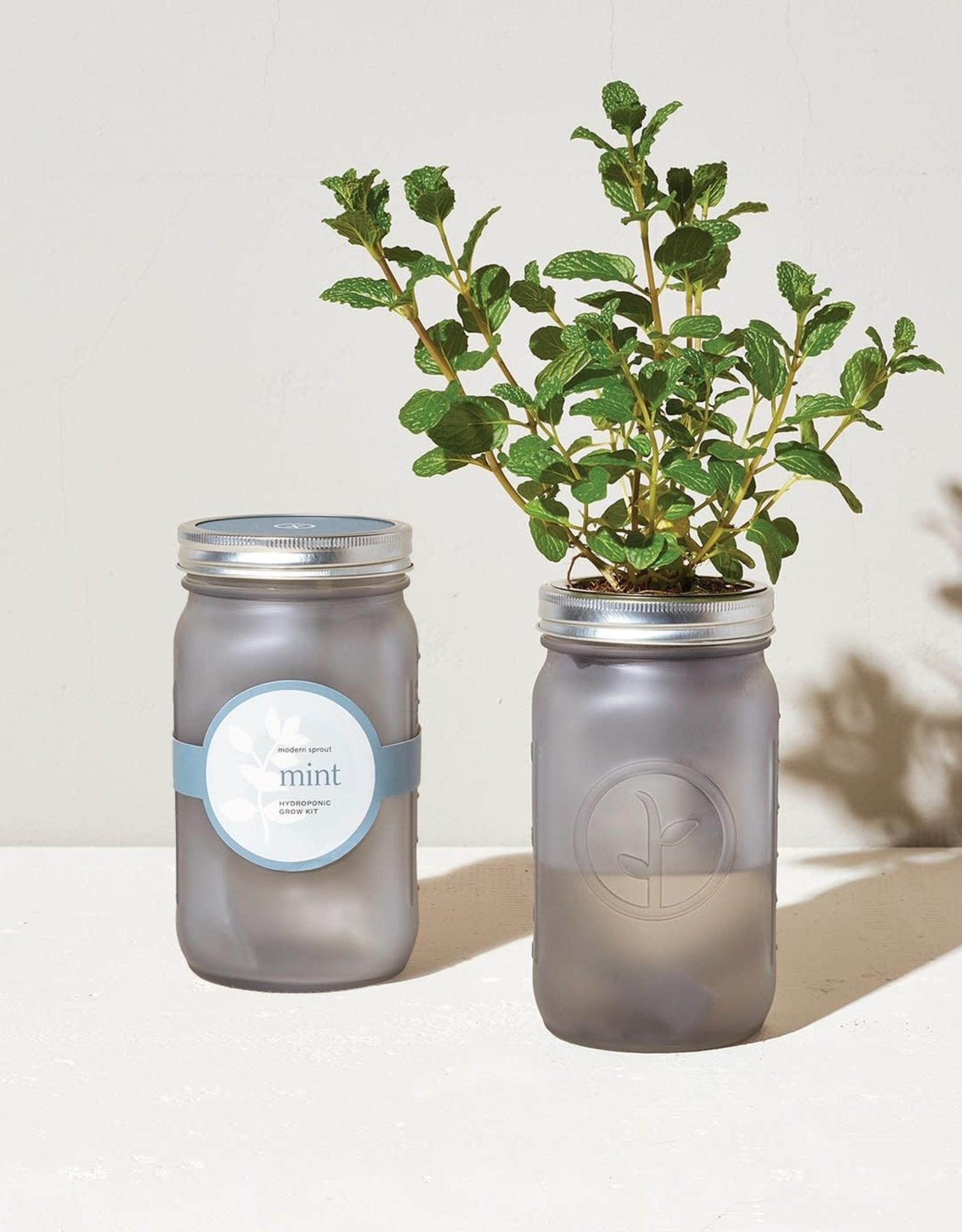 Modern Sprout LLC Self Watering Garden Jar Kit
