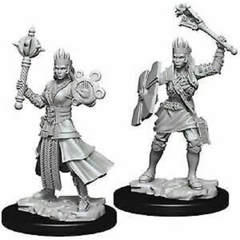 DND UNPAINTED MINIS: FEMALE HUMAN CLERIC