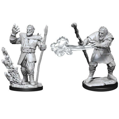 DND UNPAINTED MINIS: MALE FIRBOLG DRUID