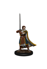 WIZKIDS DND ICONS: HUMAN CLERIC MALE PREMIUM FIG