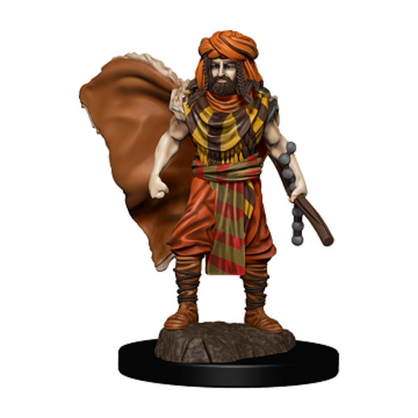 WIZKIDS DND ICONS: HUMAN DRUID MALE PREMIUM FIG