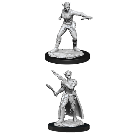 DND UNPAINTED MINIS WV13 SHIFTER ROGUE FEMALE