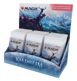 Wizards of the Coast FRANÇAIS - MTG KALDHEIM SET BOOSTER *DATE DE SORTIE 5 FÉVRIER*