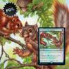 MTG Secret Lair We Hope You Like Squirrels