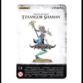 Age of Sigmar TZAANGOR SHAMAN