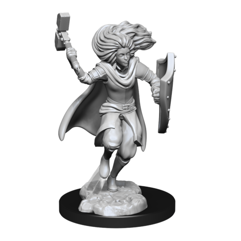 DND UNPAINTED MINIS CHANGELING CLERIC MALE