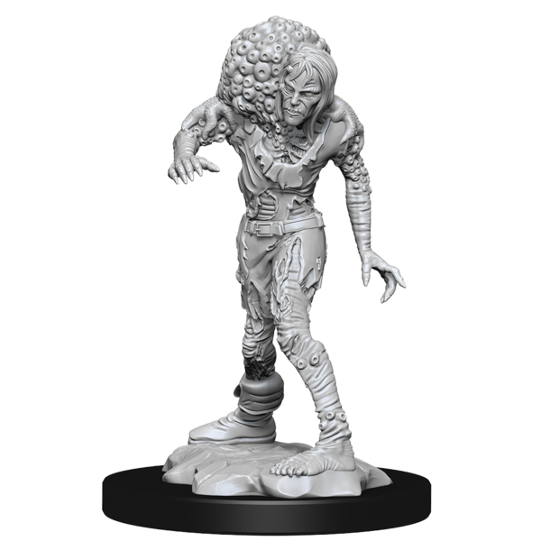 WIZKIDS DND UNPAINTED MINIS DROWNED ASSASSIN/ASETIC