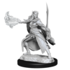 DND UNPAINTED MINIS WV15 WINTER AND SPRING ELADRIN