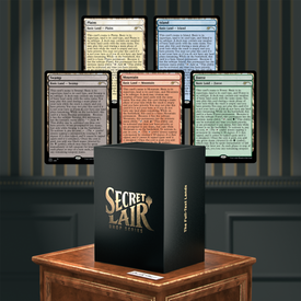 Wizards of the Coast MTG Secret Lair -The Full-Text Lands