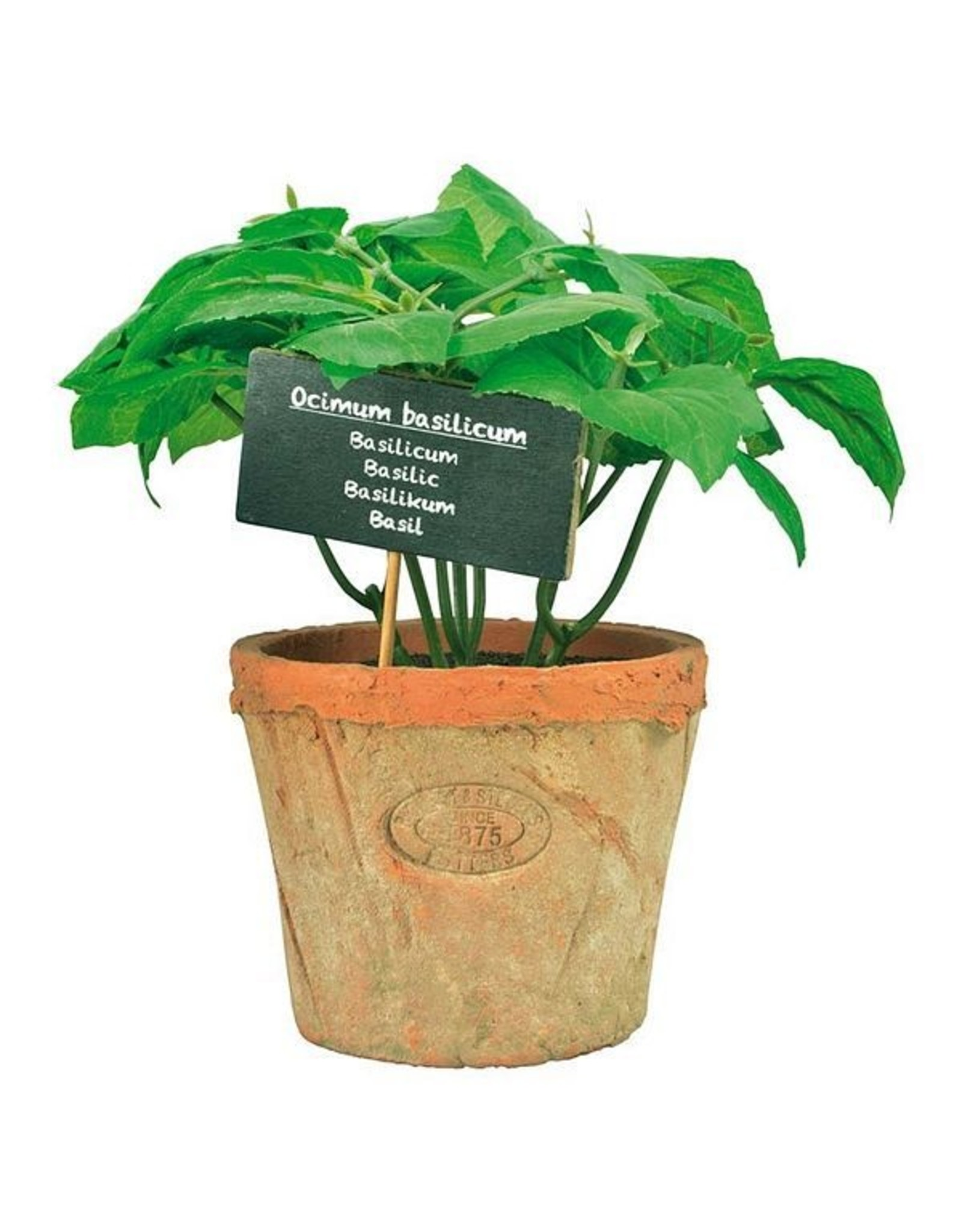 Esschert Artificial Basil in Aged Terra Cotta Pot - 19cm