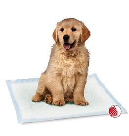 Smart Pet Love Training Pads