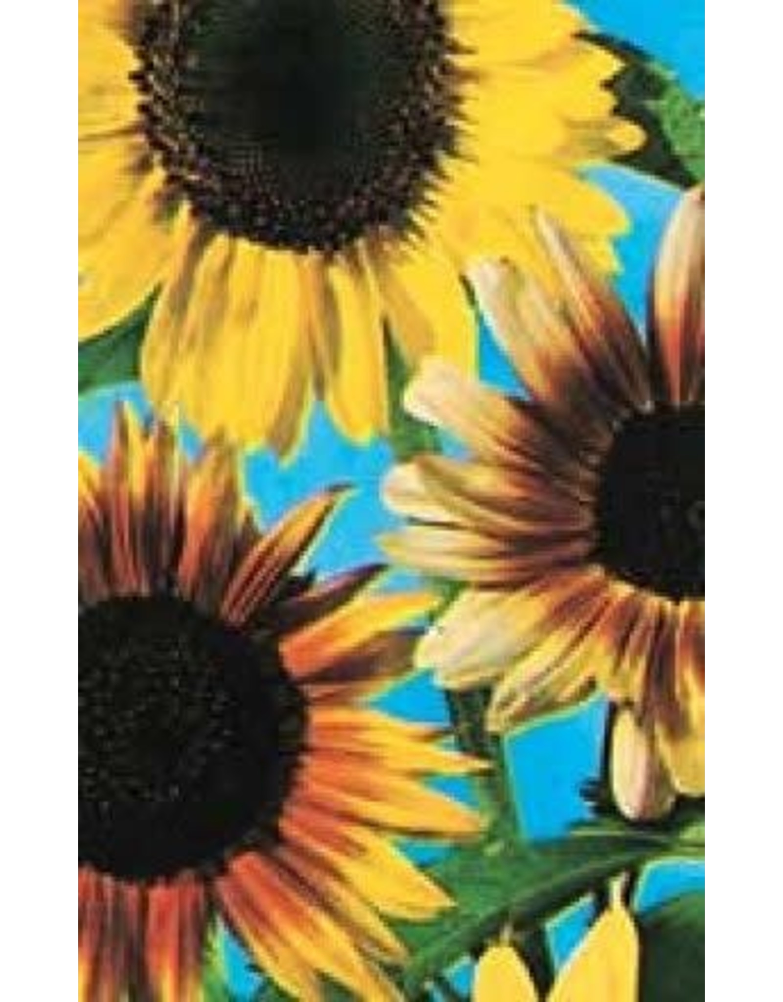 Colour Fashion Mixed Sunflower Seeds 6125