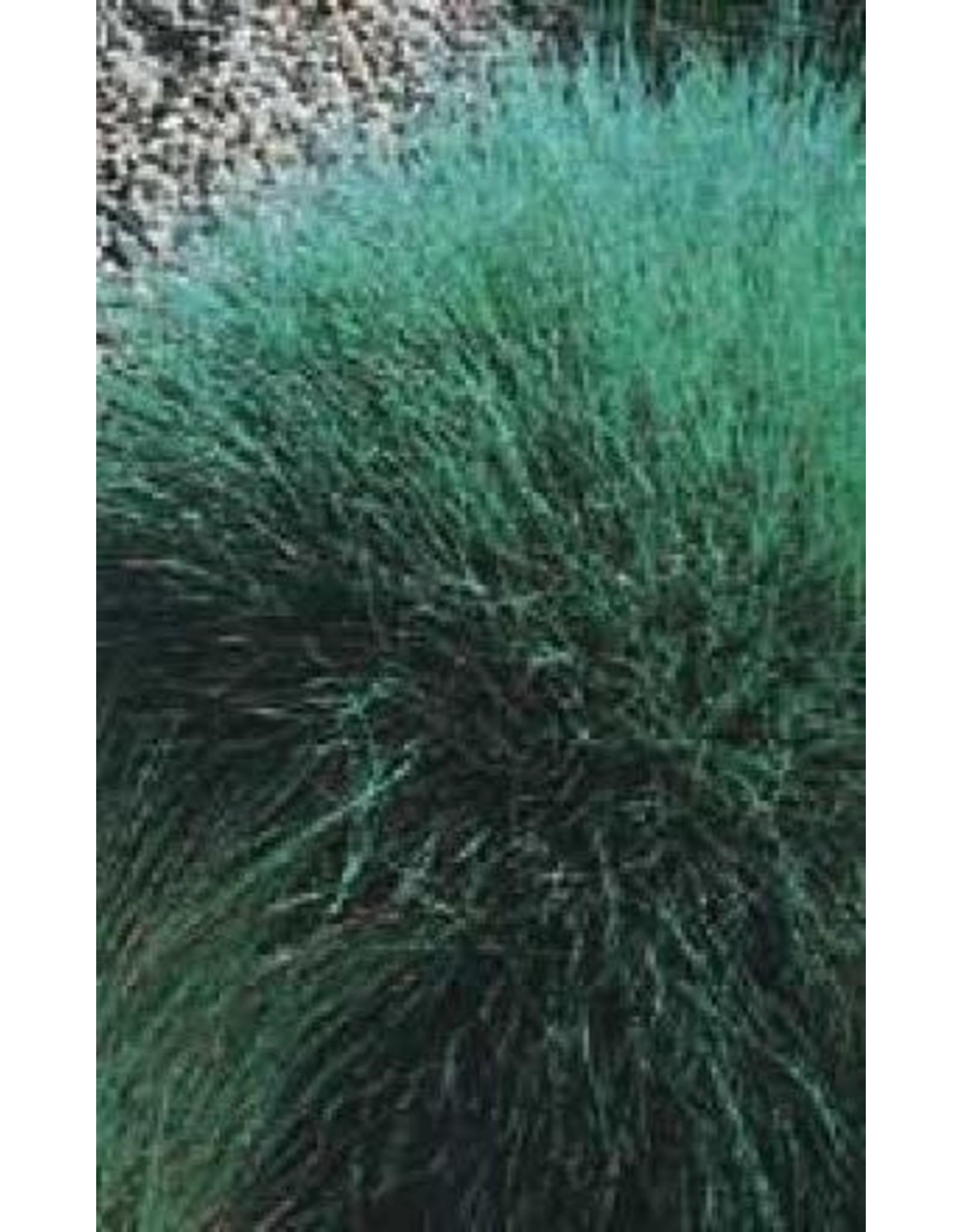 Blue Fescue Ornamental Grass Seeds 7015
