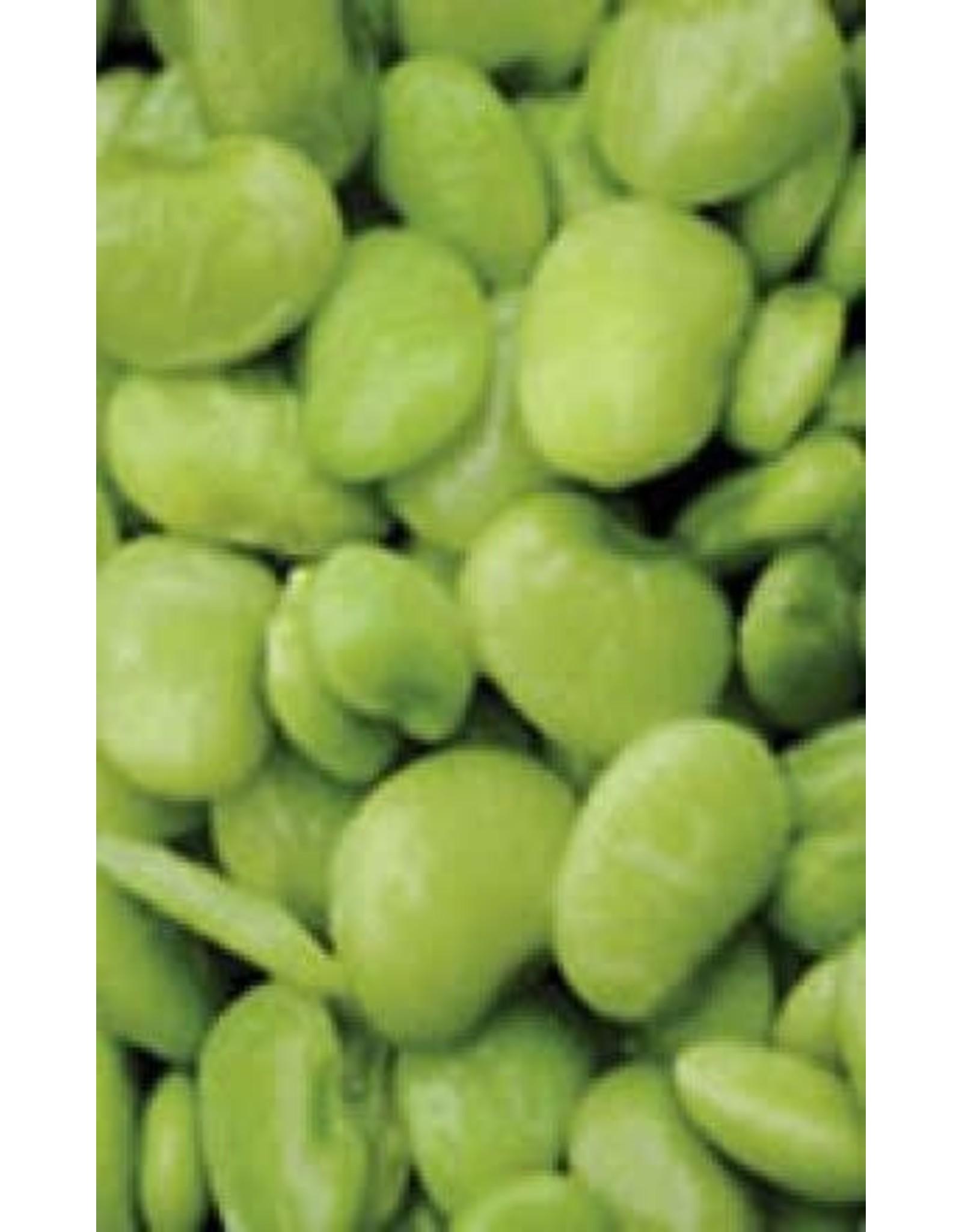 Fordhook Lima Bush Bean Seeds 1200