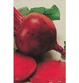 Detroit Dark Red Beet Seeds 1260