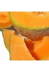 Delicious 51 Cantaloupe / Melon Seeds 1395