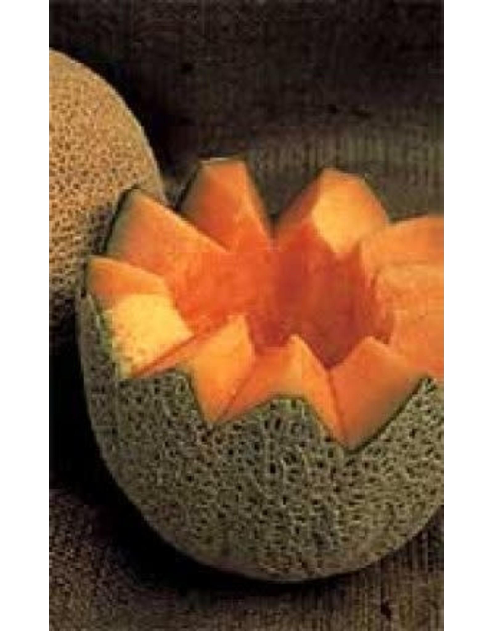 Hale's Best Cantaloupe / Melon Seeds 1390