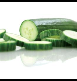 Straight Eight Cucumber Seeds (Slicing Type) 1640