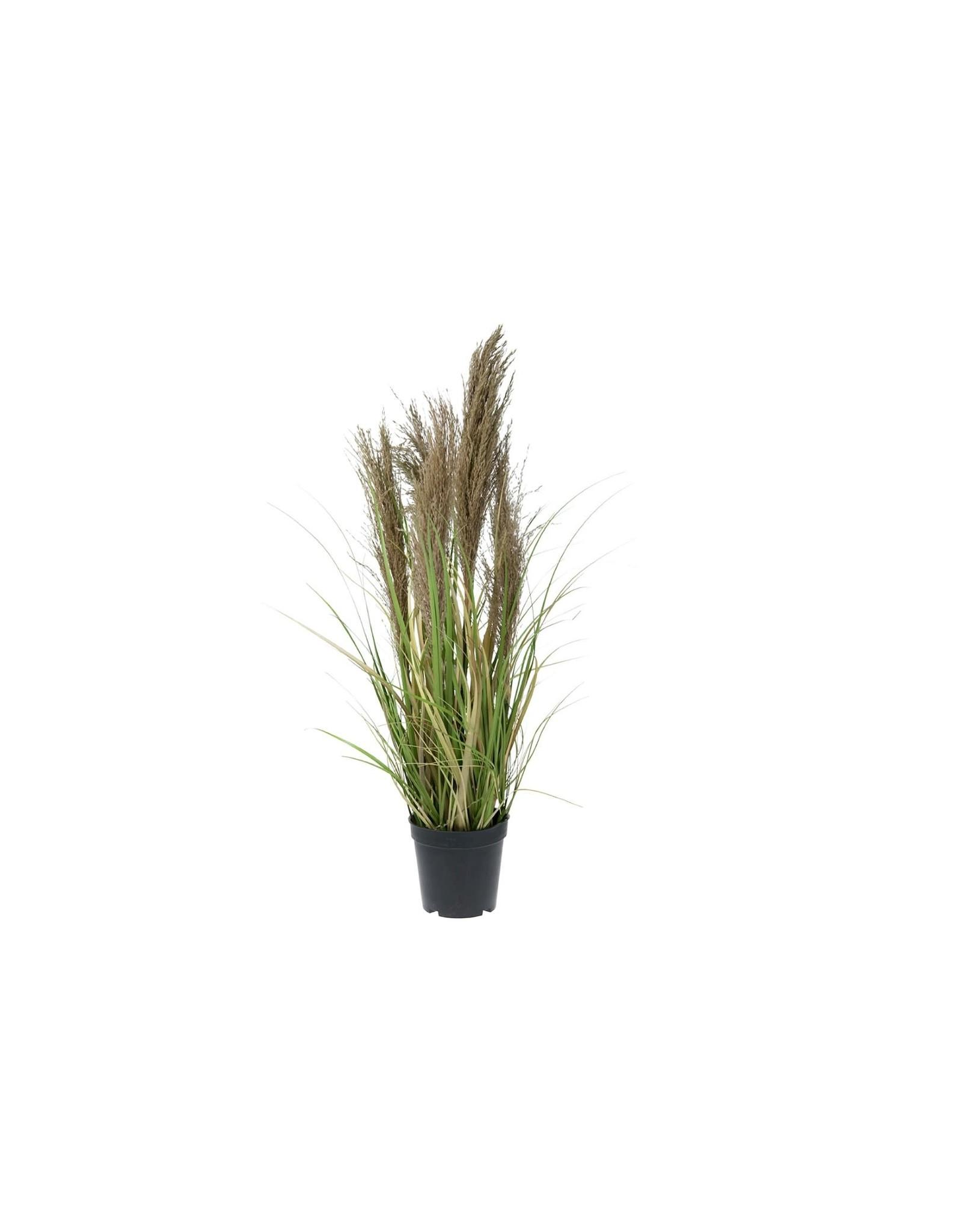 Dijk Grass With Reed Artificial 90x22x22cm