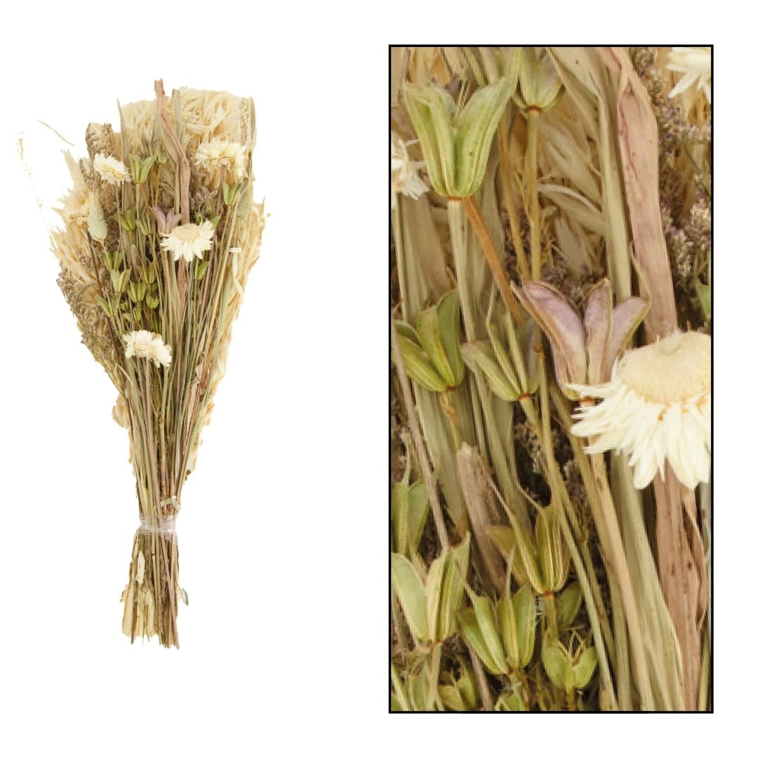 Dijk Dried Flower Bouquet 42-45cm