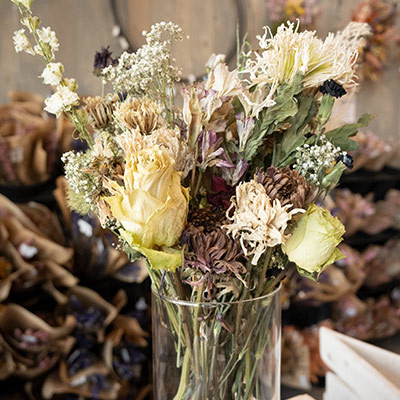 Dried flowers at Wilson's