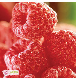 Raspberry Collection - #1