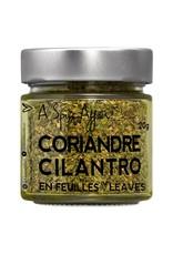 A Spice Affair Cilantro