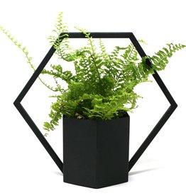 Natural Living Hanging Planter Hexagon Shaped Black