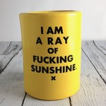 I Am A Ray of Fucking Sunshine Drink Holder