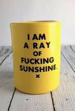 I Am A Ray of Fucking Sunshine Drink Holder
