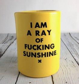 MeriwetherMade I Am A Ray of Fucking Sunshine Drink Holder
