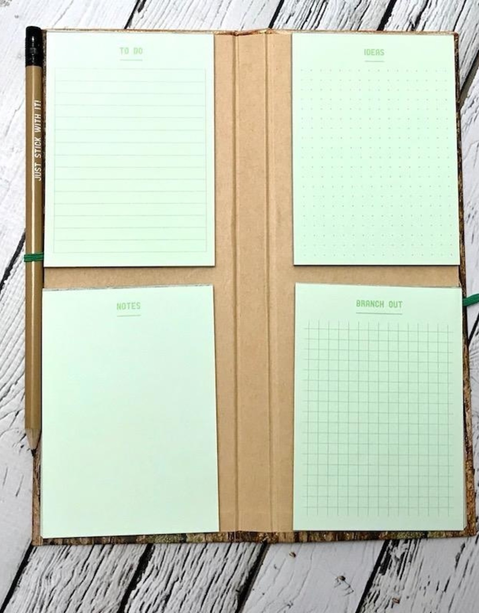 Chronicle Log Notes