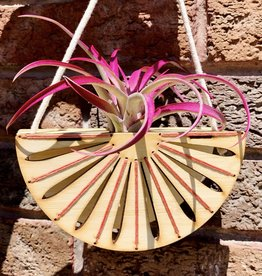 noshii Embroidered Semi Circle Air Plant Holder