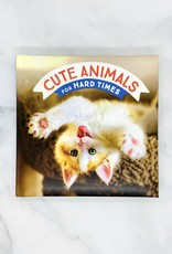 Cute Animals for Hard Times