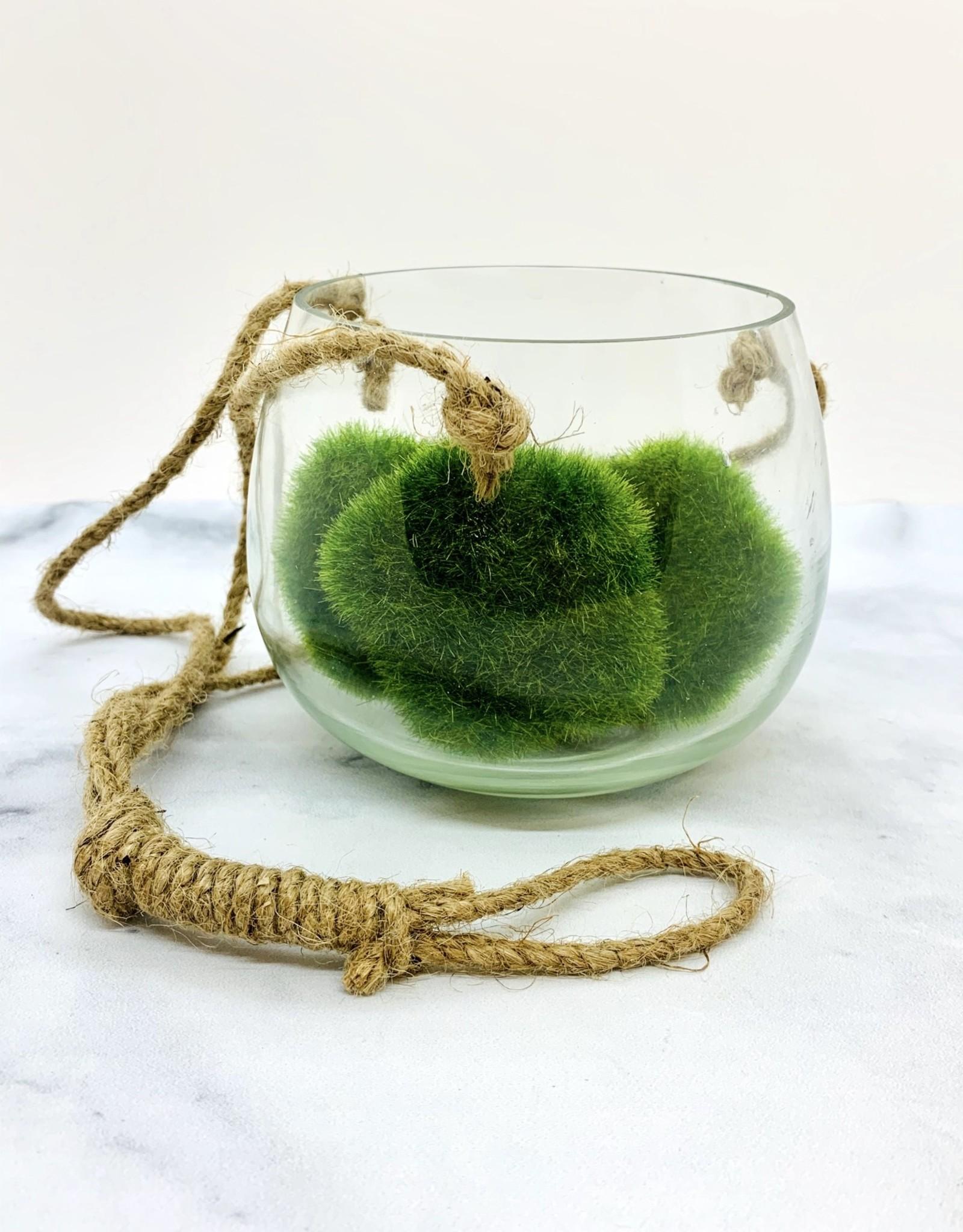 "CREATIVECOOP 5""H Hanging Tealight Holder/Vase"