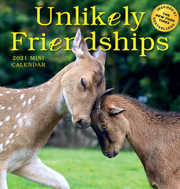 2021 Mini Calendar: Unlikely Friendships