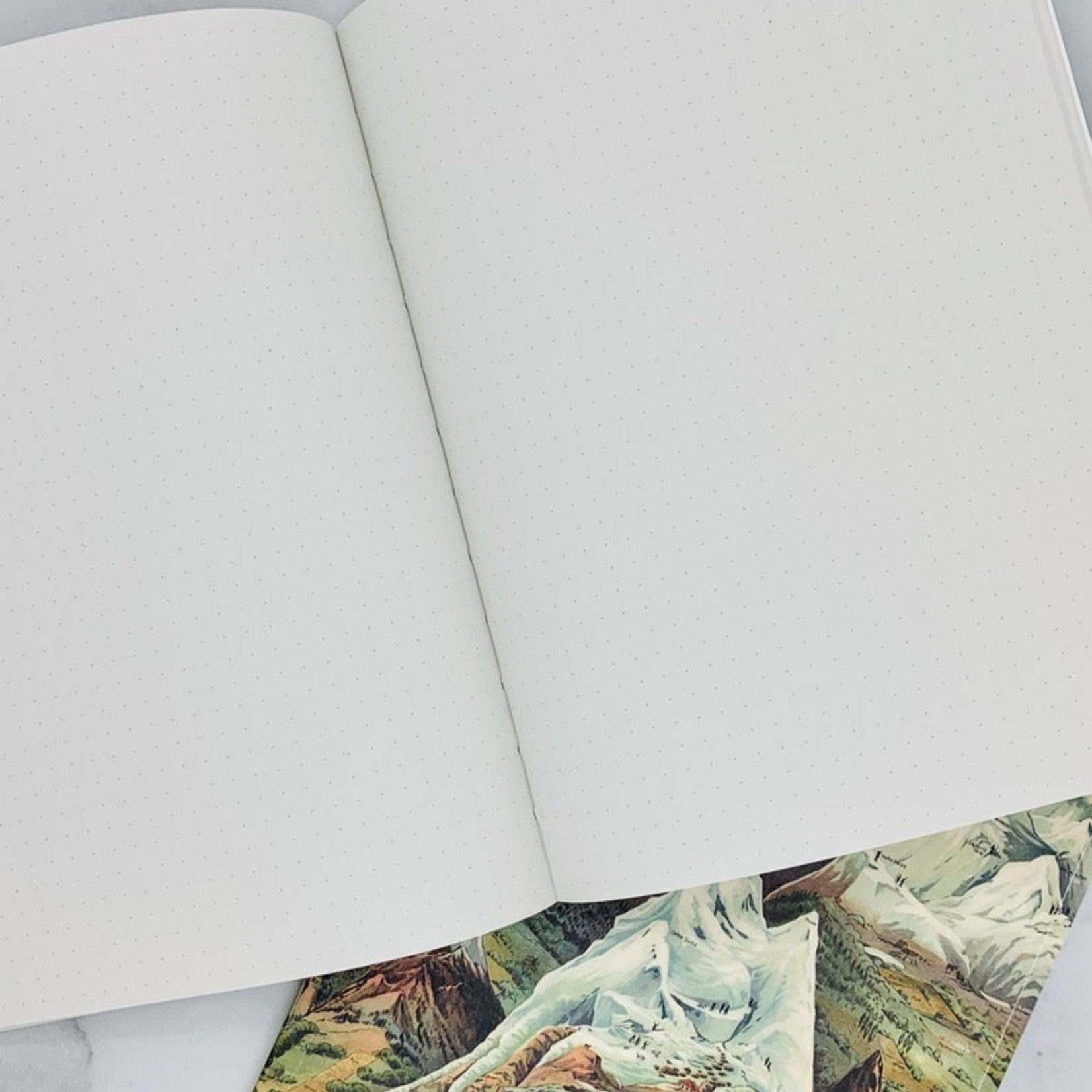 Cognitive Surplus Geology Notebooks