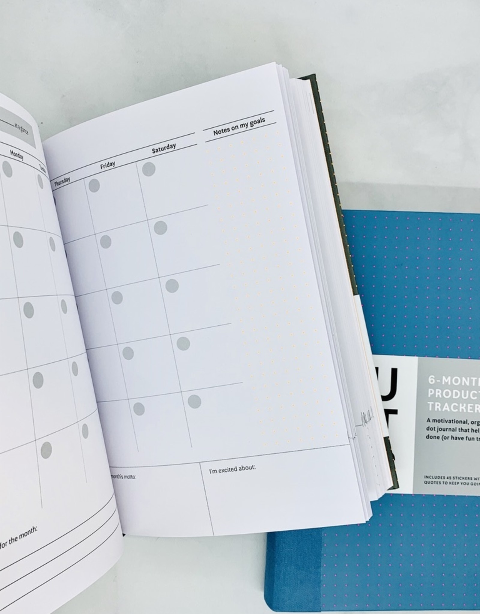 You Got This Productivity Tracker:
