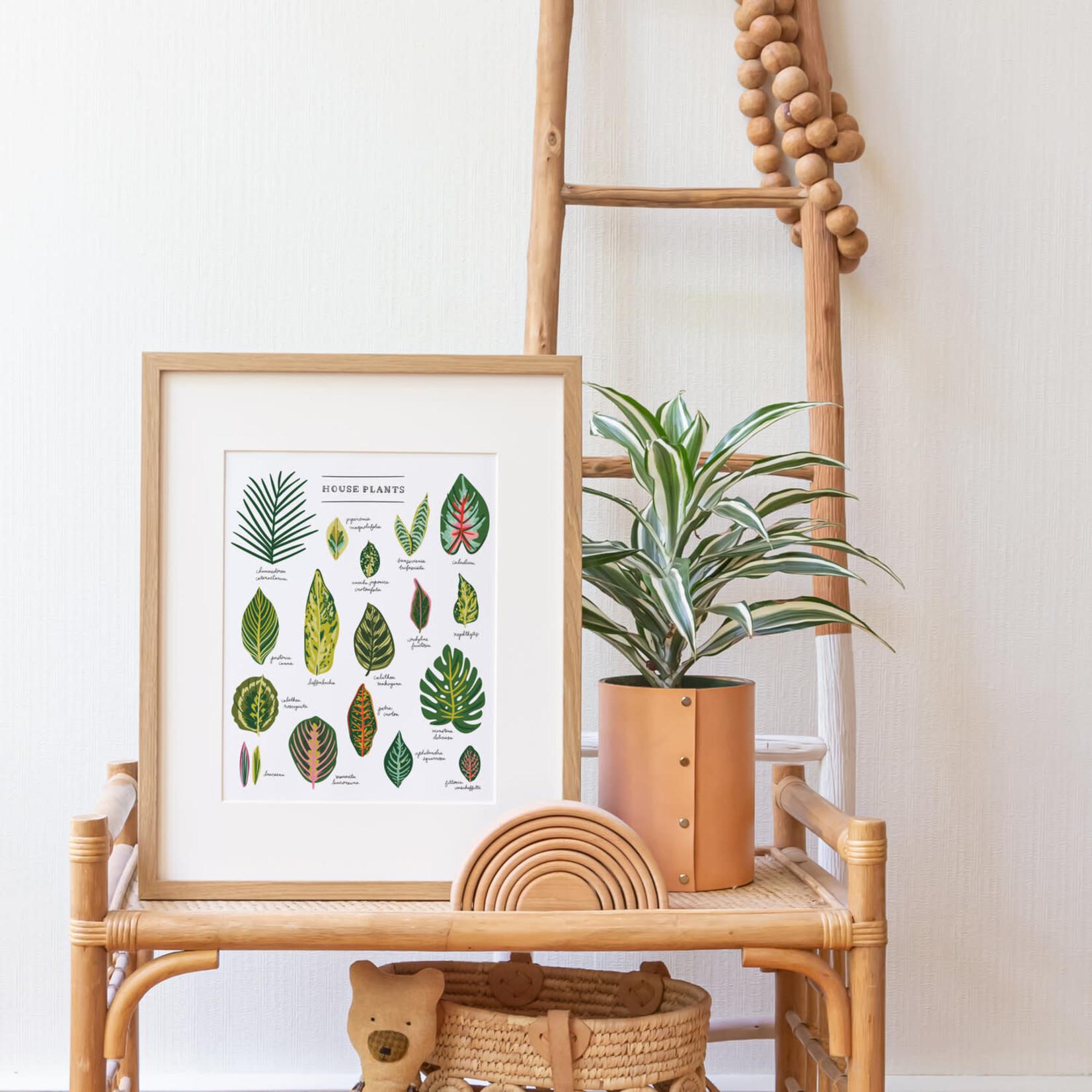 "Little Low Studio House Plants 11""x14"" Print"