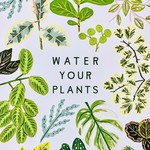 "Little Low Studio Water Your Plants 11""x14"" Print"