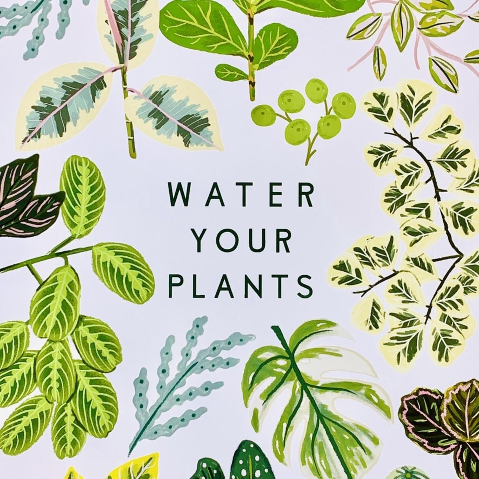 "Little Low Studio Water Your Plants 11""x14"" Print"