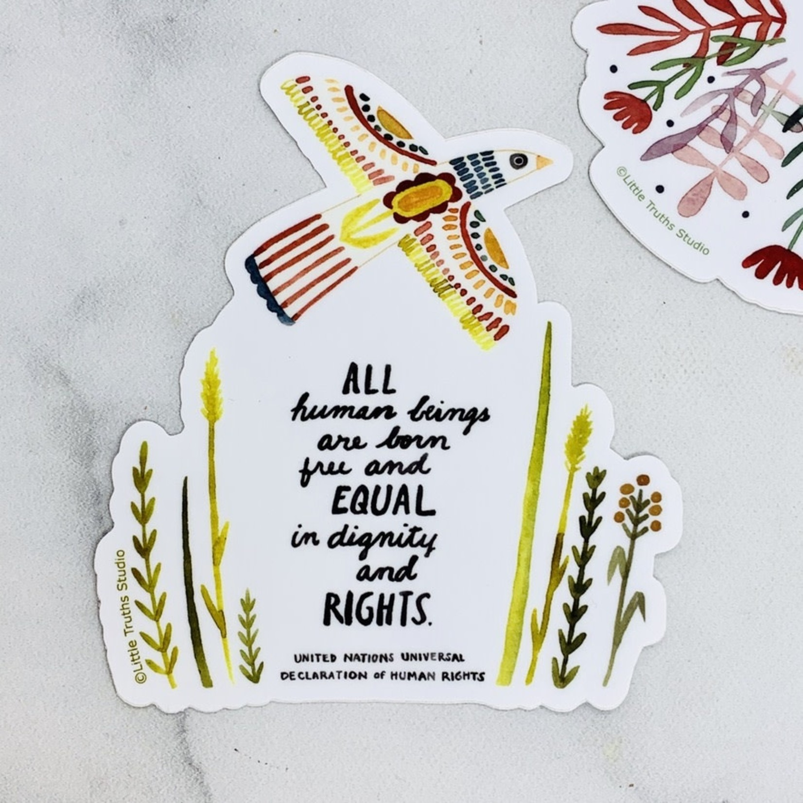 UN Declaration of Human Rights Sticker