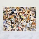 Cute Pictures of Animals 500pc Puzzle