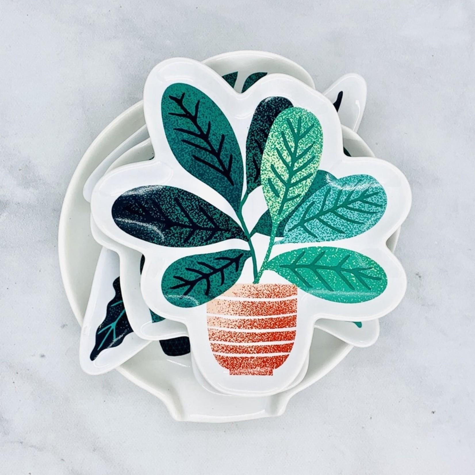 now design Let It Grow Dish