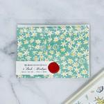 Mr. Boddington's Studio Green Daisy Fields Box of 6 Notecards