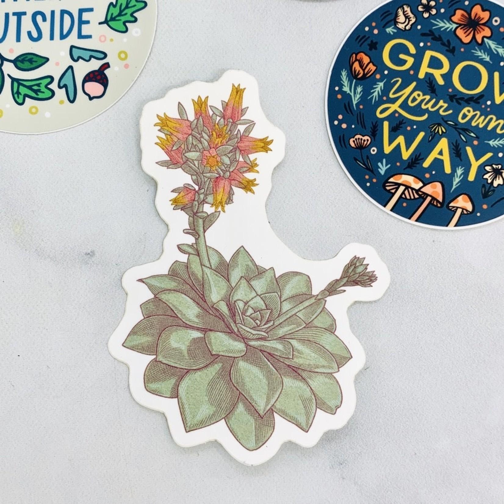 Hannah Lee Scott Succulent Sticker