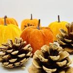 Assorted Velvet Pumpkins & Pinecones