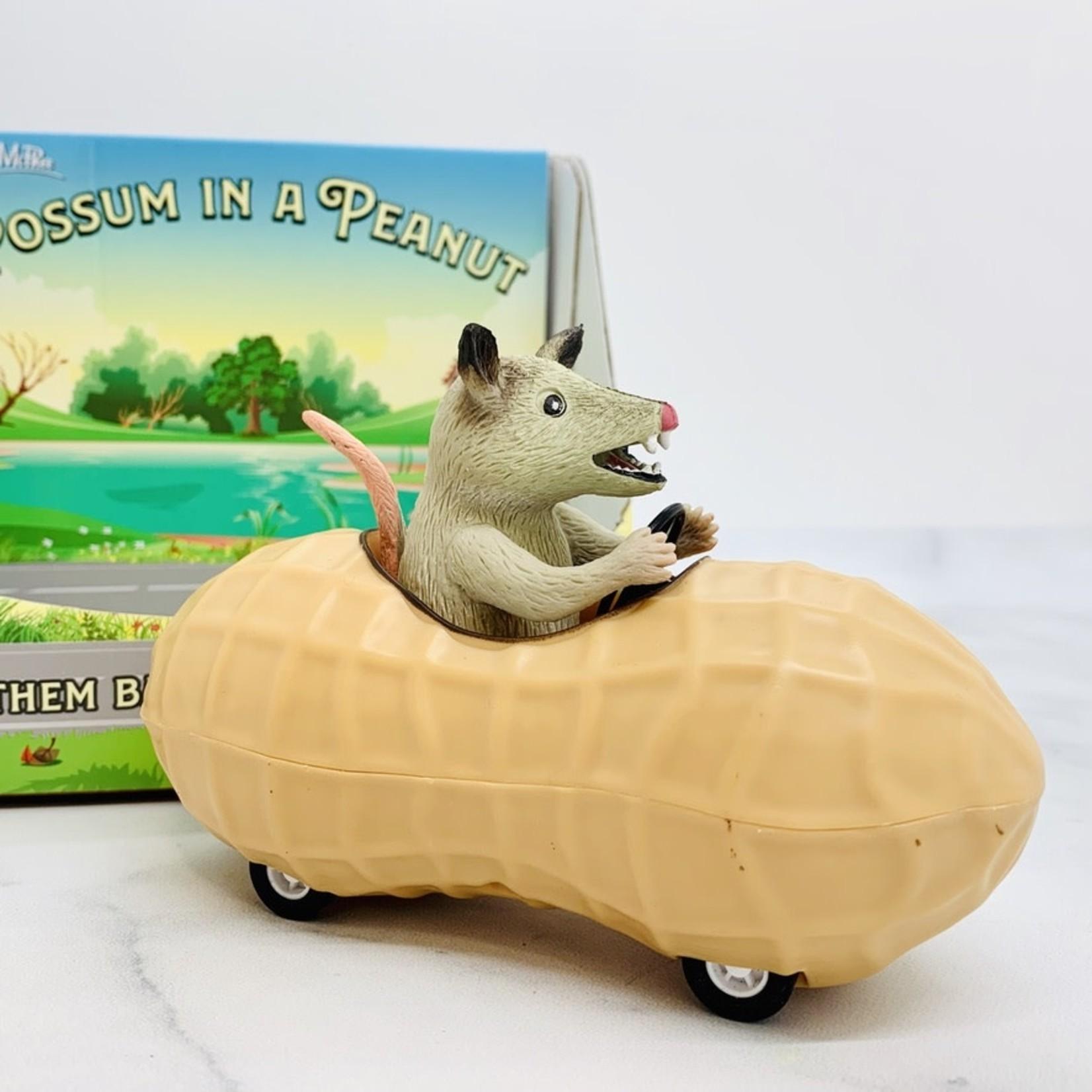 Possum in a Peanut
