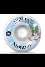 sml. Wheels Tide Pools Sammy Montano AG Formula 99a 54mm