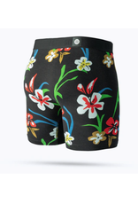 Stance Our Roots Boxer Brief